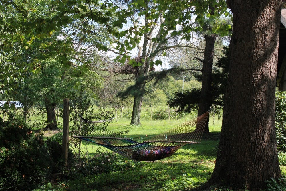<p>One of the hammocks members at Twin Oaks make and sell.&nbsp;</p>