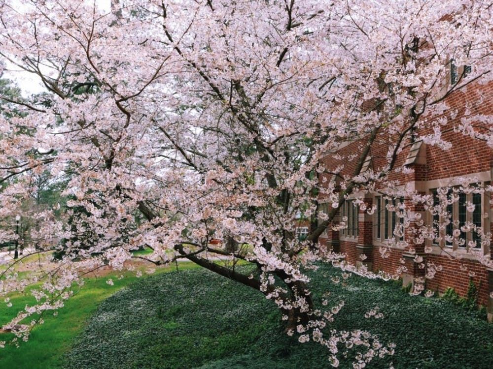 The University of Richmond campus in the spring.