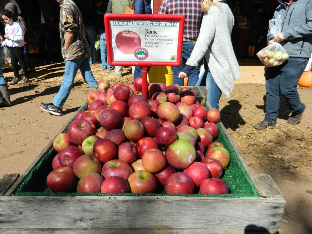 Trip to Carter Mountain Orchard