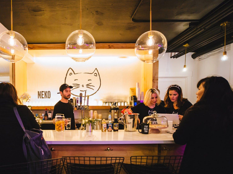 neko-cat-cafe