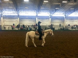 equestrian1-300x225