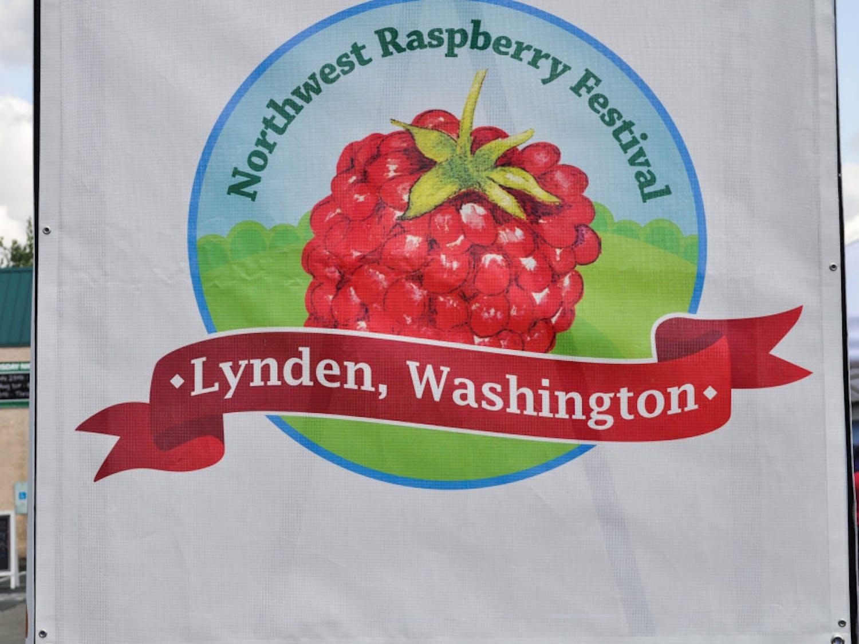 Raspberry_1-scaled