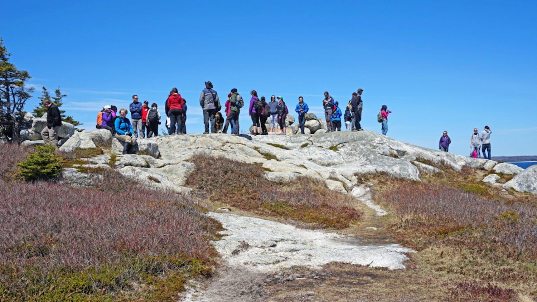 Group-Hike-Photo-scaled